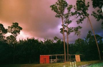 Florida, 2008