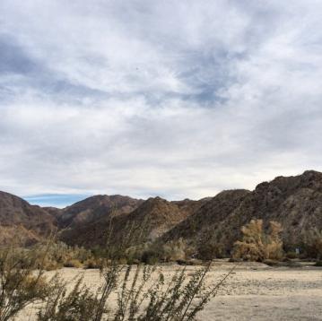 Palm Desert, 2016